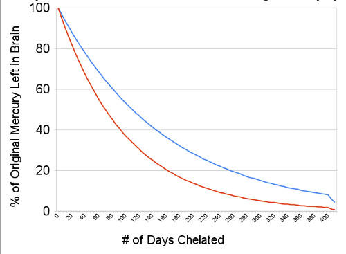 mercury decay in brain by number of chelation days